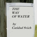 Caridad Svich's <i>The Way of Water</i>