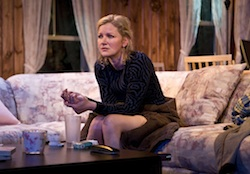 Gretchen Mol in <i>The Good Mother</i>