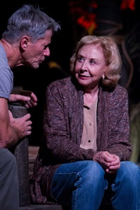 Peter Strauss and Michael Learned in <i>The Outgoing Tide</i>