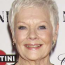 Judi Dench and Danny Boyle Among Winners of the 2012 Evening Standard Theatre Awards