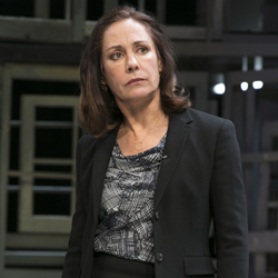 Laurie Metcalf in <i>The Other Place</i>
