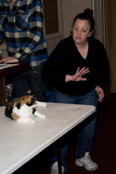 Animal trainer Babette Corelli works with Madeline.