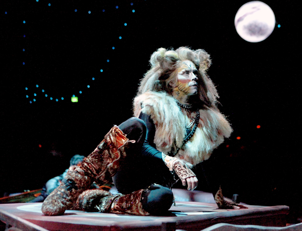 Kevin Loreque plays the rambunctious Rum Tum Tugger.<br />(© Paul Lyden)