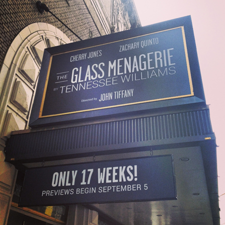 <i>The Glass Menagerie</i> — Booth Theatre<br />(© David Gordon)